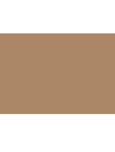 Silvano Sassetti